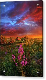 A Wisconsin Story Acrylic Print by Phil Koch