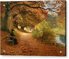 A Wooded Path In Autumn Acrylic Print by Mountain Dreams