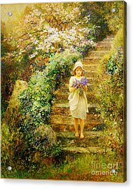 A Young Girl Carrying Violets Acrylic Print by Celestial Images