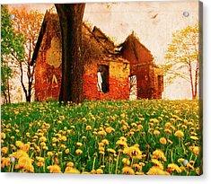 Abandoned Beauty Acrylic Print by Emily Allred
