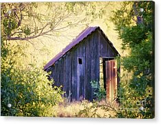 Abandoned Shed Acrylic Print by Suzon Murray