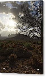 Abbey's Testament Acrylic Print by Robert Choronzuk