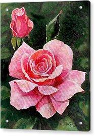 Abigail Rose Acrylic Print by Edward Farber