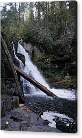 Abrams Falls Acrylic Print by Laurie Perry
