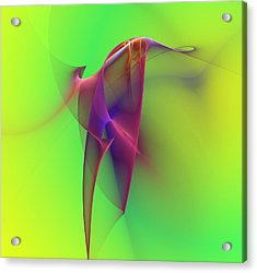 Abstract 091610 Acrylic Print by David Lane