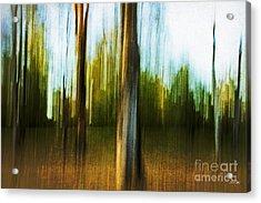 Abstract 1 Acrylic Print by Scott Pellegrin