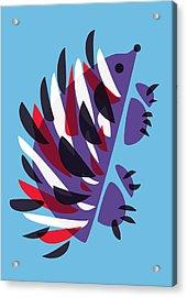 Abstract Colorful Hedgehog Acrylic Print by Boriana Giormova