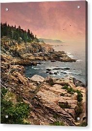 Acadia National Park Acrylic Print by Lori Deiter