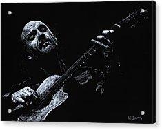 Acoustic Serenade Acrylic Print by Richard Young