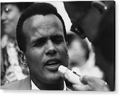 Actor And Singer Harry Belafonte Acrylic Print by Everett