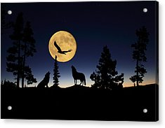 After Sunset Acrylic Print by Shane Bechler
