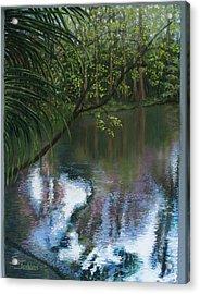 Alafia River Reflection Acrylic Print by Susan Jenkins