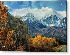 Alaskan Fall 1 Acrylic Print by Marty Koch
