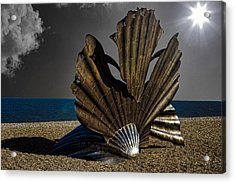Aldeburgh Beach Shell Sculpture Acrylic Print by Martin Newman
