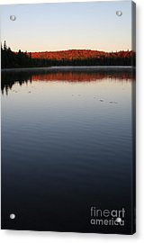 Algonquin First Light Acrylic Print by Chris Hill