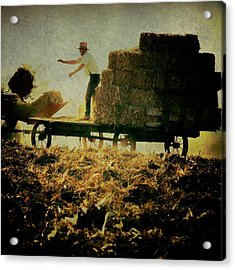 All In A Day's Work Acrylic Print by Trish Tritz