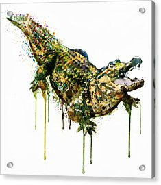 Alligator Watercolor Painting Acrylic Print by Marian Voicu