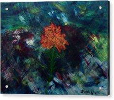 Alone Acrylic Print by Bamhs Blair