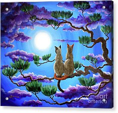 Alone In The Treetops Acrylic Print by Laura Iverson