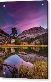Alpine Reflection Acrylic Print by Dan Holmes