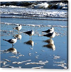 Always One In A Crowd Acrylic Print by Cindy Piper