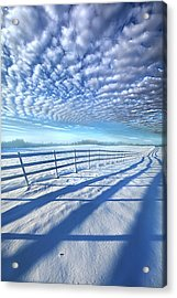 Always Whiter On The Other Side Of The Fence Acrylic Print by Phil Koch