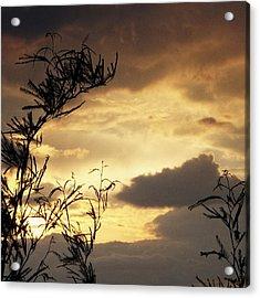 Amber Sky Acrylic Print by Glenn McCarthy Art and Photography