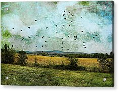 Amber Waves Of Grain Acrylic Print by Jan Amiss Photography