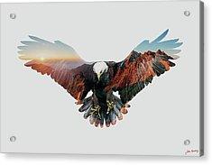 American Eagle Acrylic Print by John Beckley