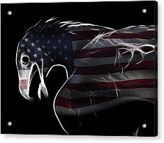 American Eagle Acrylic Print by Melanie Viola