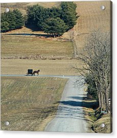 Amish Horse And Buggy On A Country Road Acrylic Print by Dan Sproul