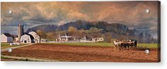 Amish Plow Acrylic Print by Lori Deiter