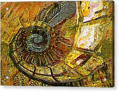 Ammonite Acrylic Print by Anne Weirich