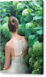 Among The Hydrangeas Acrylic Print by Anna Rose Bain