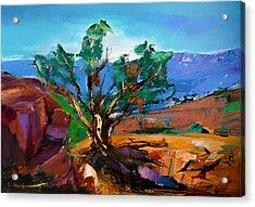Among The Red Rocks - Sedona Acrylic Print by Elise Palmigiani
