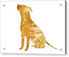Amstaff Gold Silhouette Large Poster Acrylic Print by Joanna Szmerdt