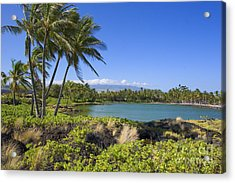 Anaehoomalu Bay Acrylic Print by Ron Dahlquist - Printscapes