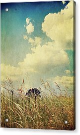 And The Livin's Easy Acrylic Print by Laurie Search