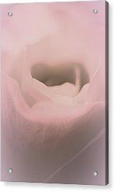 Angel Heart Acrylic Print by  The Art Of Marilyn Ridoutt-Greene