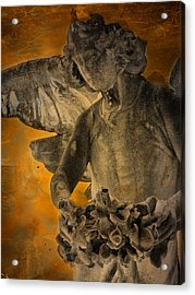 Angel Of Mercy Acrylic Print by Larry Marshall