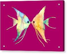 Angelfish Kissing Acrylic Print by Hailey E Herrera