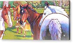 Anjelica Huston's Horses Acrylic Print by Nadi Spencer