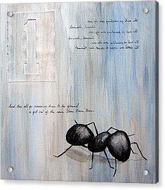 Ants Marching 1 Acrylic Print by Kristin Llamas