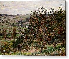 Apple Trees Near Vetheuil Acrylic Print by Claude Monet