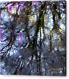 April Showers 2 Acrylic Print by Dale   Ford