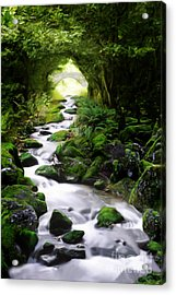 Arden Bridge Acrylic Print by John Edwards
