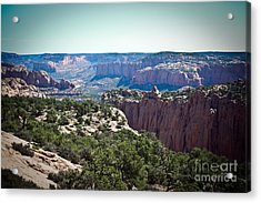 Arizona Desert Landscape Acrylic Print by Ryan Kelly