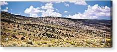 Arizona Hills Acrylic Print by Ryan Kelly
