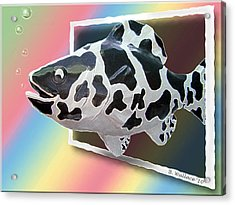 Art Fish Fun Acrylic Print by Brian Wallace
