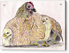 As A Hen Gathereth Her Chickens Under Her Wings Acrylic Print by Marqueta Graham